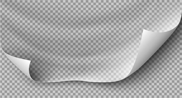 Paginakrul met schaduw op blanco vel papier