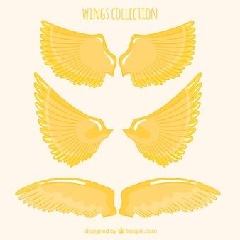 Pak met handgetekende gouden vleugels