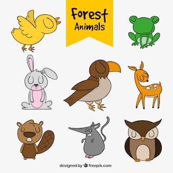 Pak van de hand getekende dieren in het bos