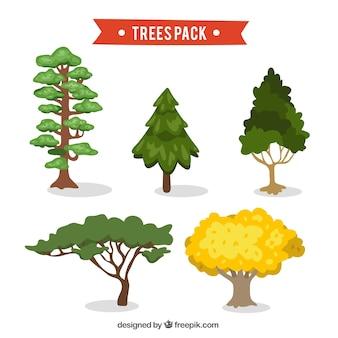 Pak van dennen en andere hand getekende bomen