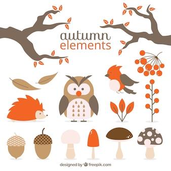 Pak van dieren en herfst natuurlijke elementen