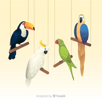 Pak van exotische vogels realistische stijl