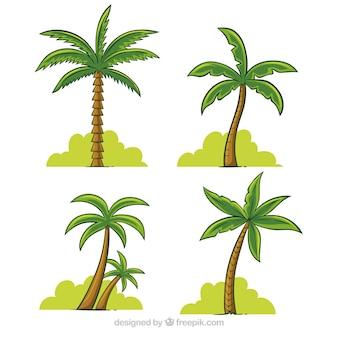 Pak van handgetekende palmbomen