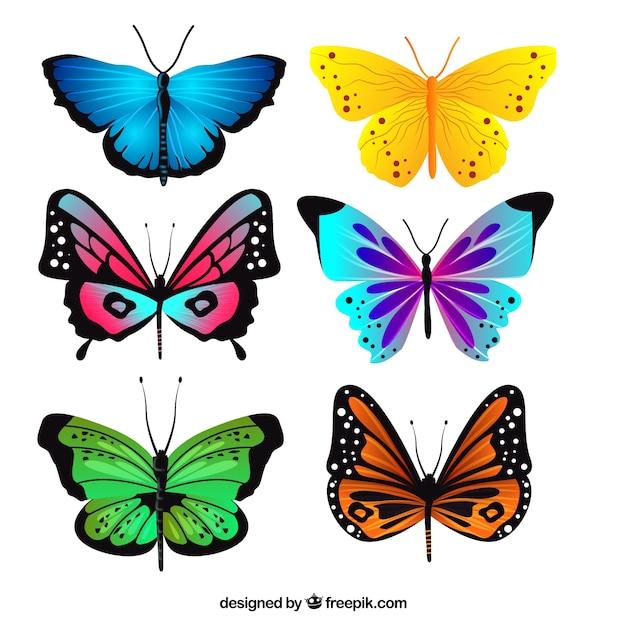 Pak van realistische vlinders met verschillende kleuren