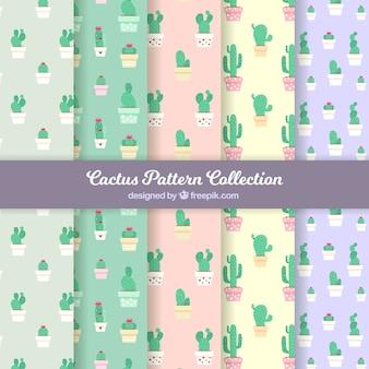 Pakket van cactuspatronen in plat ontwerp