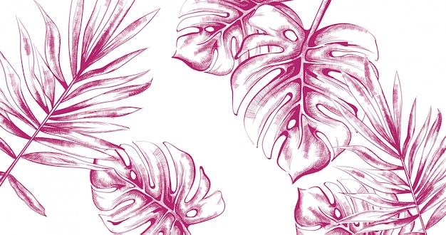 Palm bladeren