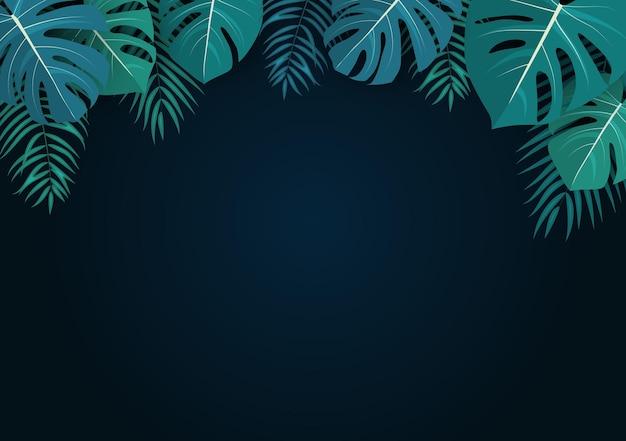 Palm en monstera bladeren natuurlijke zomerachtergrond