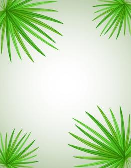 Palm tak vectorillustratie