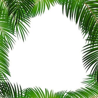 Palmblad op witte achtergrond met plaats voor uw tekst vectorillustratie
