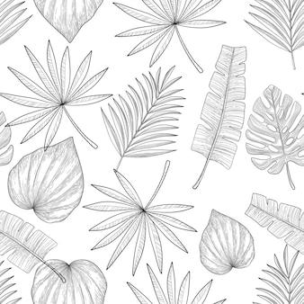 Palmbladen op witte achtergrond. hand getrokken naadloze patroon.