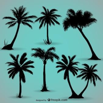 Palmbomen zwarte silhouetten