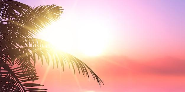 Palmsilhouet tegen zon