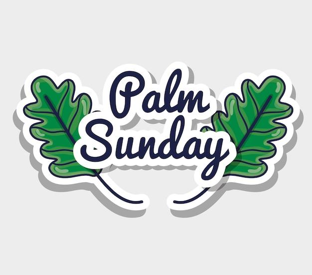 Palmzondagboodschap naar katholieke religie