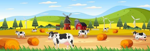 Panoramalandschapsscène met veel koeien op de boerderij
