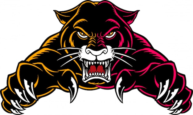 Panther front