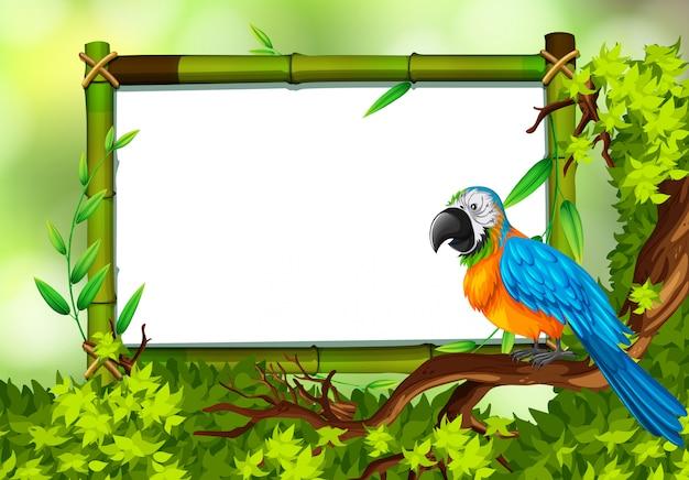 Papegaai op aard groene sjabloon