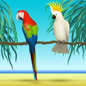Papegaaien, kaketoe, realistische vogels zittend op tak tropische achtergrond met strand en zee