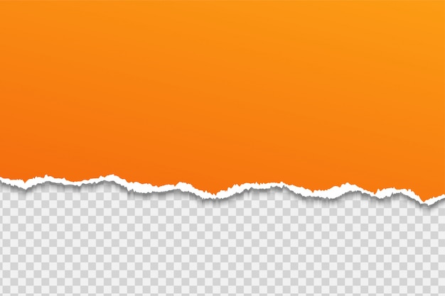 Papier of rand scheuren op een transparante achtergrond.