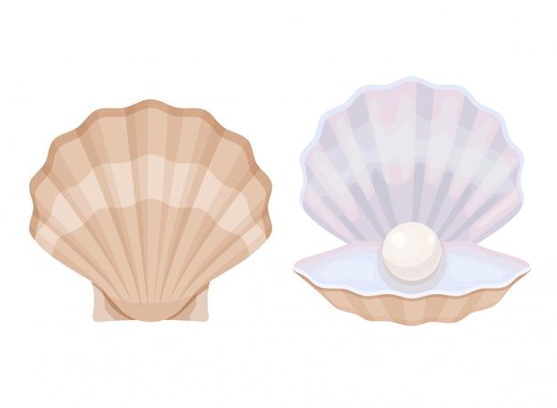 Parel in een open oester. open en gesloten schelp met een witte parel.