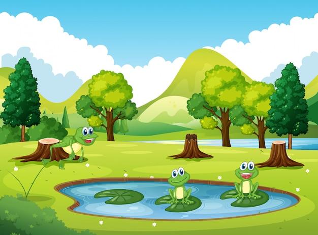 Parkscène met drie kikkers in de vijver