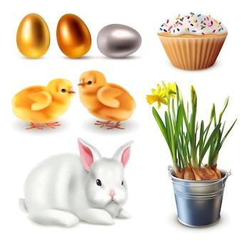 Pasen set items. konijn, narcissen, eieren, kippen, cupcake