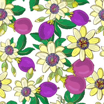 Passiebloem passiflora, passie paars fruit op een witte achtergrond. naadloze bloemmotief. grote heldere exotische maracuja bloemen, knop en blad. zomer illustratie voor print textiel, stof.