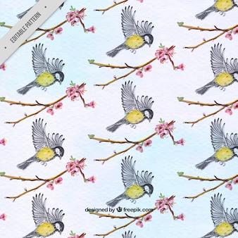 Patroon van vogels en aquarel takken