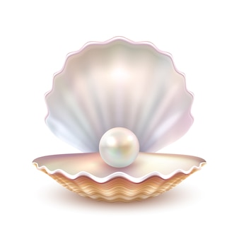 Pearl shell realistische close-up afbeelding