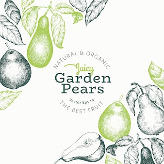 Peer ontwerpsjabloon. hand getekend vector tuin fruit illustratie. gegraveerde stijl tuin retro botanisch.