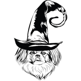 Pekinees hond in heksenhoed voor halloween