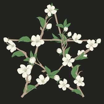 Pentagramteken met takken van een bloeiende boom wordt gemaakt die. hand getekend botanische witte bloesem op zwarte achtergrond. vector illustratie.