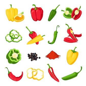Peper en paprika. rode, groene en gele zoete, hete en pittige pepers. jalapeno, paprika, cayennepeper en chilikruid voor saus, vectorset. rijp ingrediënt voor het bereiden van vegetarische gerechten