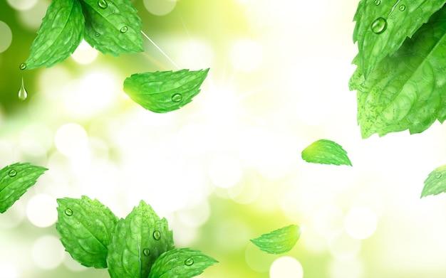 Pepermunt bokeh achtergrond, verfrissende bladeren geïsoleerd op de scène van het ochtendpark met sterke zonnestraal, 3d illustratie