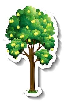 Perenboom sticker op witte achtergrond