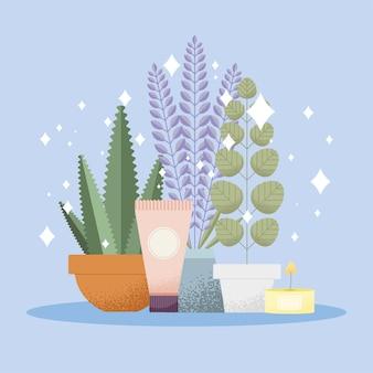 Pictogrammen voor aromatherapie en spabehandelingen