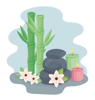 Pictogrammen voor bamboe en spa