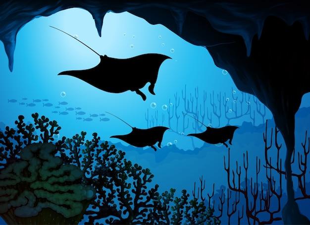 Pijlstaartrog in onderwaterscène