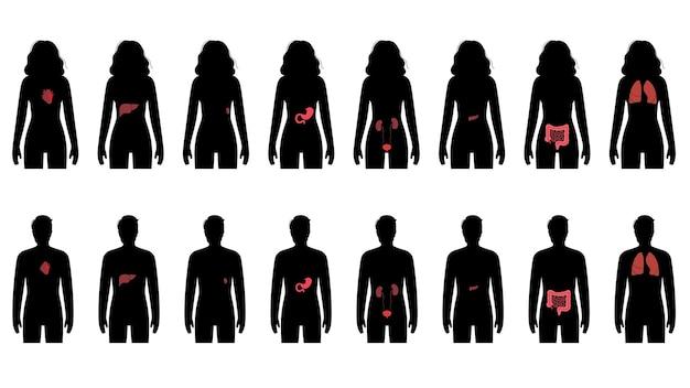 Pijn in inwendige organen in het lichaam van een man en een vrouw.