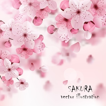 Pink cherry sakura print