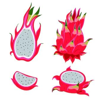 Pitahaya fruit geïsoleerd op een witte achtergrond. vectorafbeeldingen.