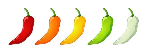 Pittig voedselniveau. chili peper verschillende kleur sterkte schaal. voedsel infographic.