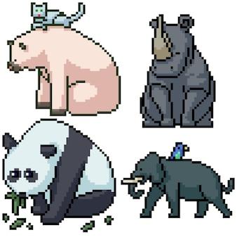Pixel art set geïsoleerd groot zoogdier