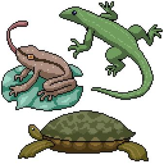 Pixel art set geïsoleerd klein amfibie reptiel