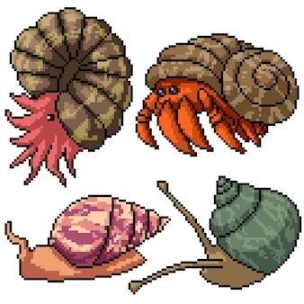 Pixel art set geïsoleerd shell schepsel