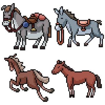 Pixel art set geïsoleerde ezel en paard