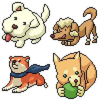 Pixel art set geïsoleerde grappige hond