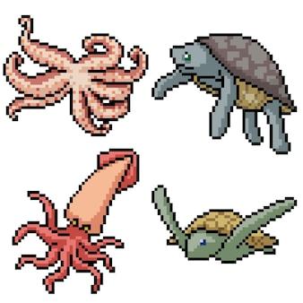 Pixel art set geïsoleerde inktvis schildpad