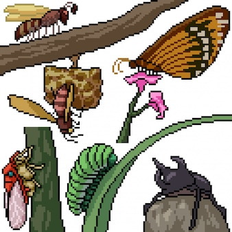 Pixel art set geïsoleerde insectensoorten