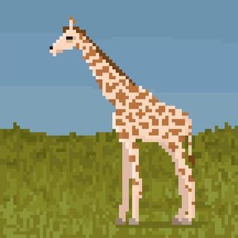 Pixel giraf op een gras.