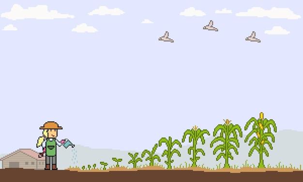 Pixelart van maïsboerderij groeit